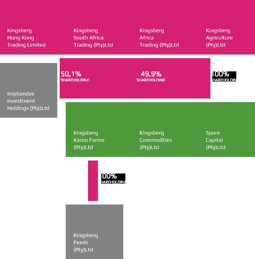 Kingsberg companies organogram